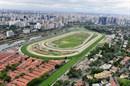 FRANCISCO MORATO   jockey2