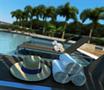 Perspectiva ilustrada do Zoom da piscina